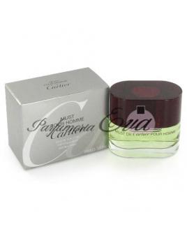 Cartier Must Pour Homme, Toaletná voda 100ml